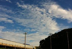 空のパレット